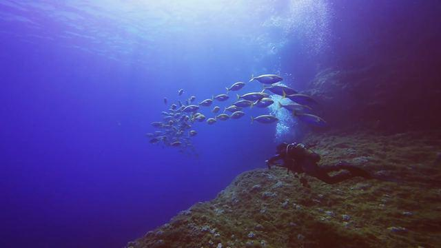 Diving in Spain, Comunidad Valenciana - By Andy
